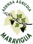 Vini Maraviglia - Matelica